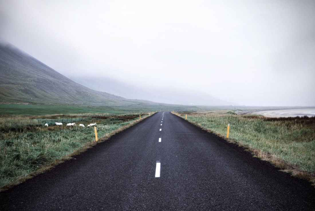 adventure asphalt autumn calmness